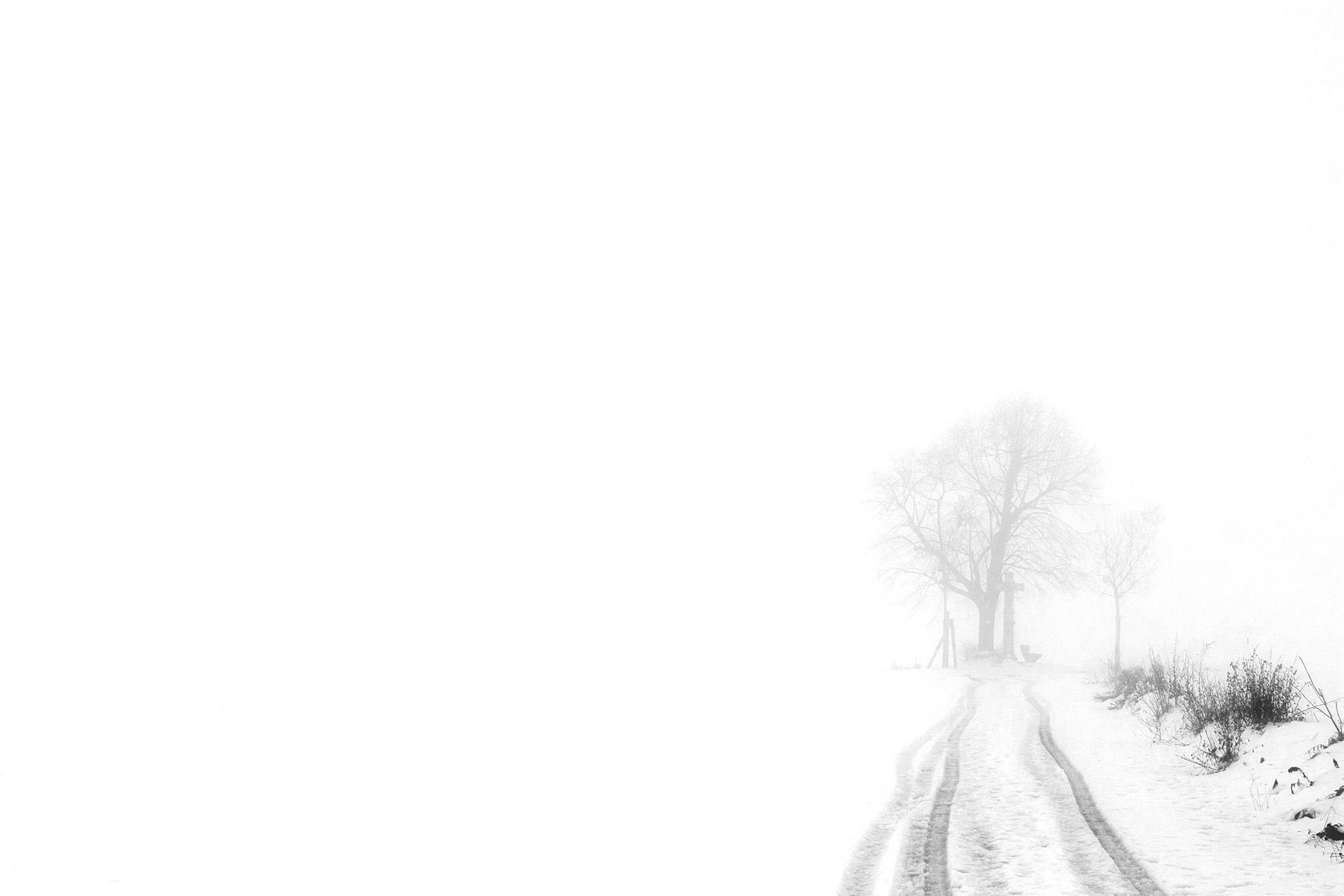 dark_white