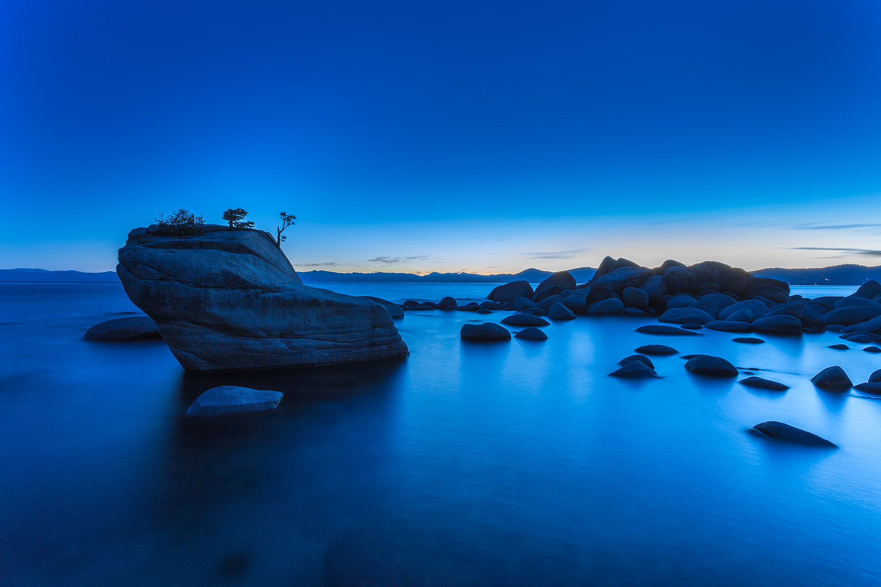 bonsai_rock